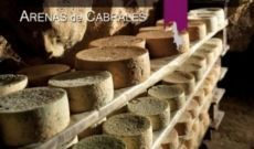 Cabrales Cheese Contest